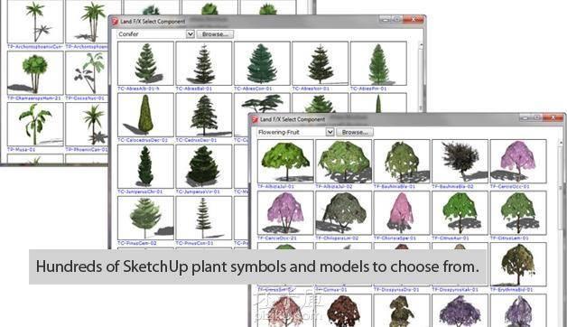 sketchup树木、sketchup景观